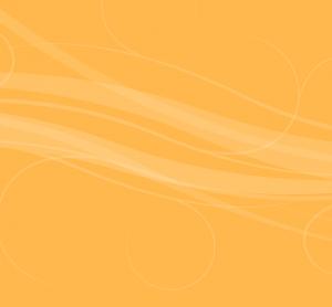 orange background 300x278 - orange-background